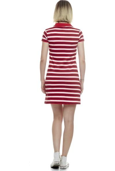 Divon Kadın Kırmızı Çizgili Pike Yakalı Elbise 9Ybeldı8006