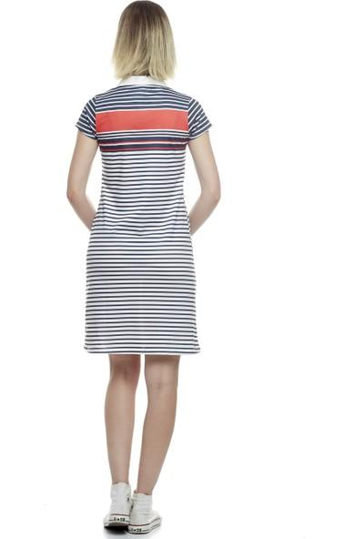 Divon Kadın Ekru-Lacivert Çizgili Yakalı Kadın Elbise 9Ybeldı8028