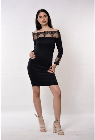 Gossip Kolları Ve Yakası Dantel Detaylı Siyah Elbise