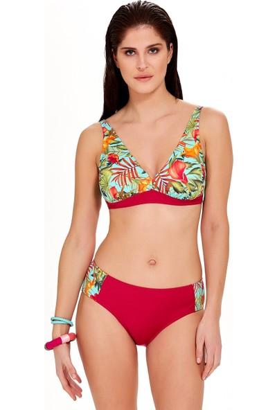 Argento Kadın Nadide Bikini Takımı
