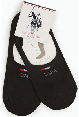 U.S. Polo Assn. Earliy7 Çorap