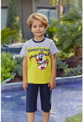 Roly Poly Looney Tunes Lisanslı Erkek Çocuk Kapri Takım