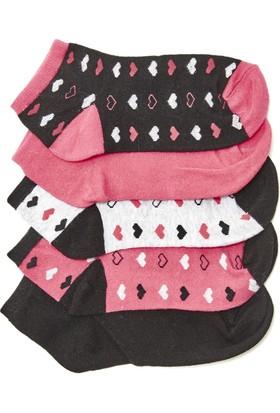 Hogg Kalp Desenli Patik Çorap Seti