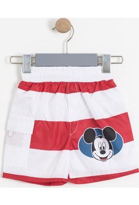 Soobe Disney Mickey Mouse Erkek Çocuk Şort Mayo SBAECSRT1088_18-1663
