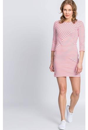 Lacoste Elbise Kırmızı EF52491