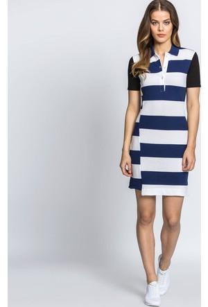 Lacoste Elbise Mavi EF52521