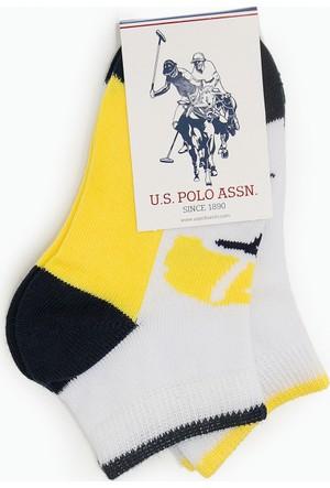 U.S. Polo Assn. Jones Çorap