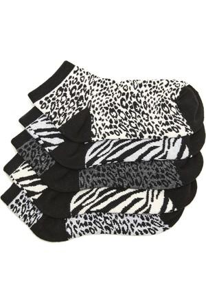 Hogg Leopar Desenli Patik Çorap Seti
