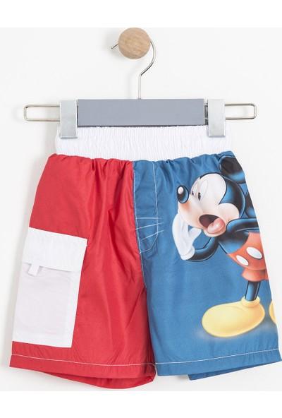 Soobe Disney Mickey Mouse Erkek Çocuk Şort Mayo SBAECSRT1085_18-3949