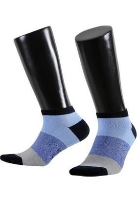 Aytuğ Sail Erkek Çorap Koleksiyonu