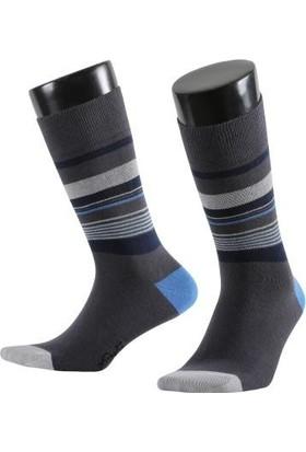 Aytuğ Business Erkek Çorap Koleksiyonu