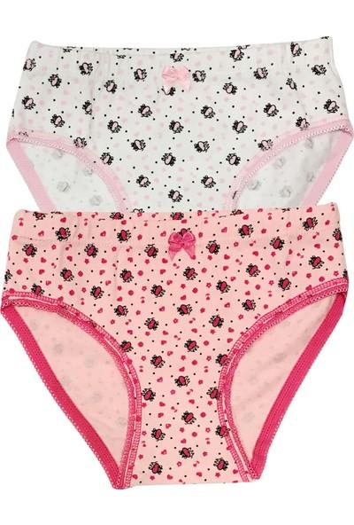 Özkan Underwear 41016 2'li Paket Kız Çocuk Külot