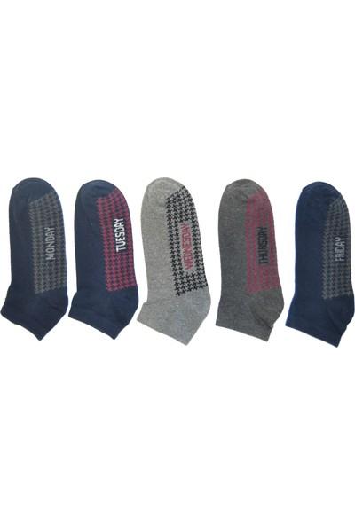 Esse Erkek Çorabı