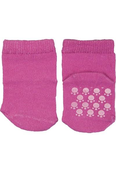 Fındık Bebe Düz Bebek Çorap Fuşya