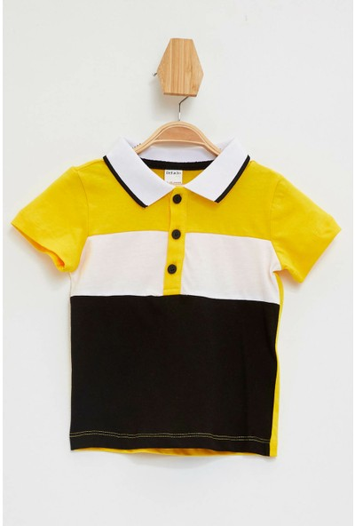 DeFacto Erkek Bebek Renk Bloklu Polo Yaka Tişört L4017A219AU