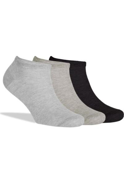 Brogetti Sneakers Çorap 3'Lü Paket Kısa Soket