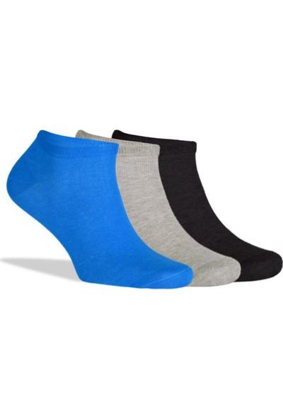 Brogetti Sneakers Renkli Erkek Çorap Pamuklu Kısa Soket 3'Lü Paket