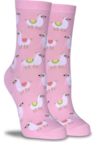 Brogetti Pembe Renk Kuzu Desen Soket Çorap