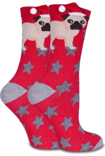 Brogetti Simli Yıldız Ve Pug Desen Soket Çorap