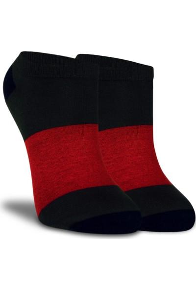 Brogetti Kırmızı-Antrasit Çizgi Detaylı Kısa Soket Çorap