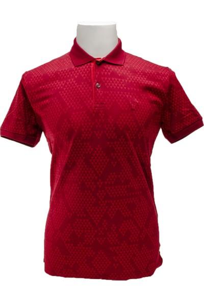 Comienzo 920 Model Polo Yaka T-Shirt