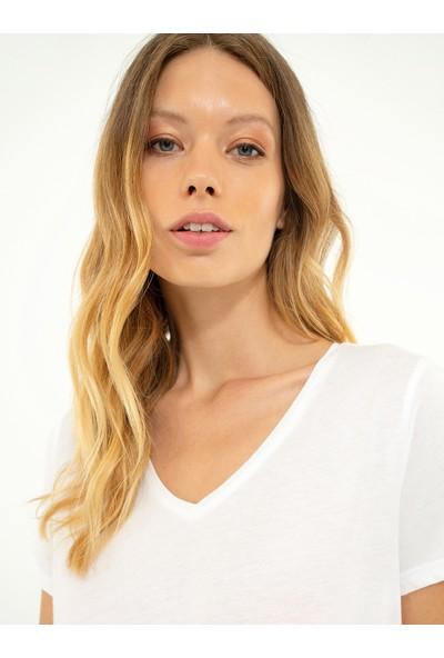 Pierre Cardin Kadın Tshirt 50212460-Vr013