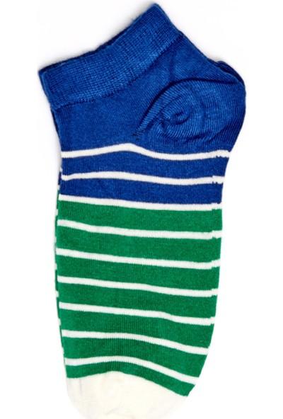 FullaModa Erkek Çizgili Patik Çorap