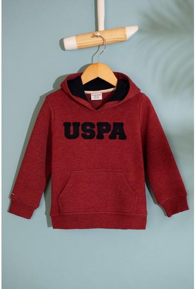 U.S. Polo Assn. Erkek Çocuk Sweatshirt 50207310-Vr178