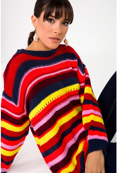 Liplipo Kadın Çok Renkli Triko