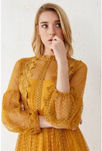 Freestar Kadın Beli Lastikli Dantelli Elbise