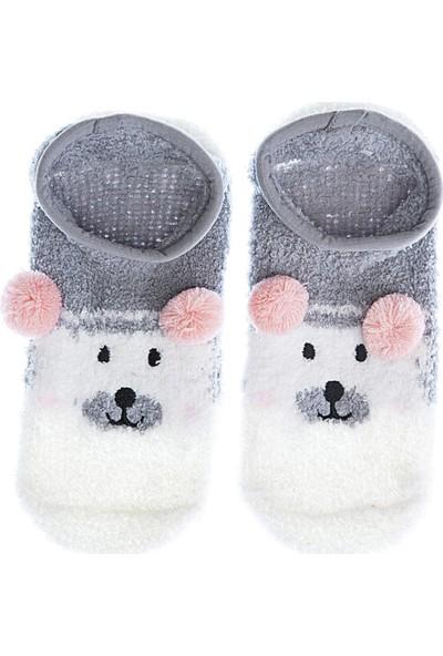 Twigy Tw Wilbur Kadın Çorap Nn0765