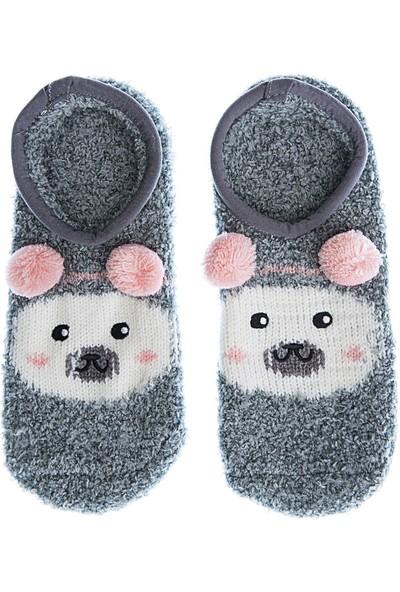 Twigy Tw Wilbur Çorap Kadın Çorap Nn0765