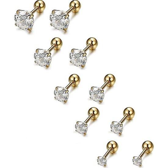 Chavin Gold 5 Takım Taşlı Bayan Erkek Çelik Küpe Piercing EB60SR
