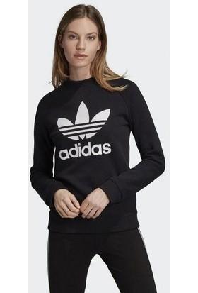 Adidas Kadın Giyim Sweatshirts Trf Crew Sweat DV2612