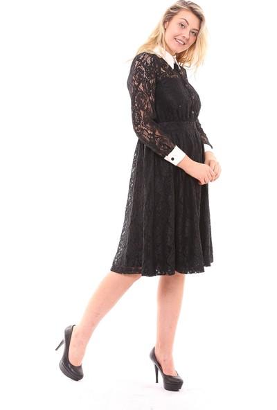 Sense Kadın 32244 Angela Yakası Beyaz Dantel Elbise