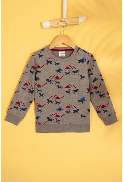 U.S. Polo Assn. Erkek Çocuk Sweatshirt 50207365-Vr086