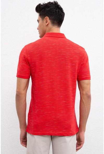 U.S. Polo Assn. Erkek T-Shirt 50221125-Vr030
