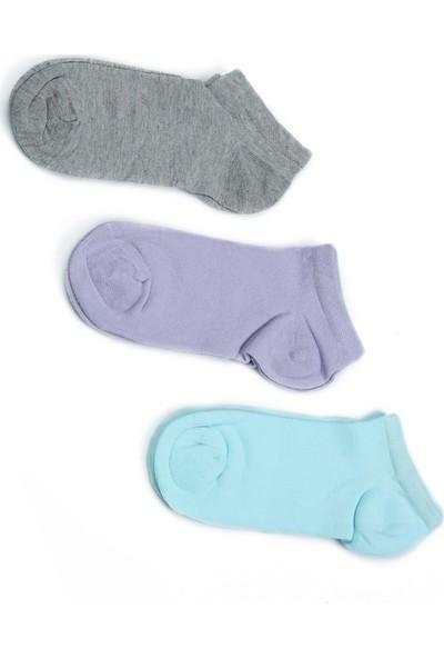 Akbeniz Kadın Gri - Lila - Su Yeşili 3'lü Pamuk Patik Çoraplar 5534