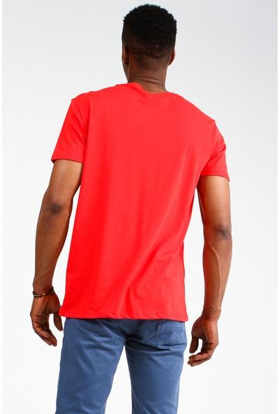 Collezione Erkek T-Shirt Kısa Kol Bedal