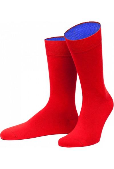 Happy Body 6 Adet 3 Renk Asortili Organik Renkli Erkek Çorap