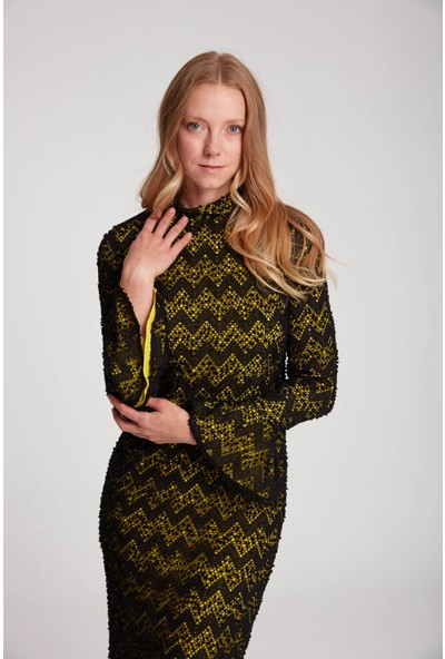Mizalle Kadın Renk Detaylı Dantel Elbise
