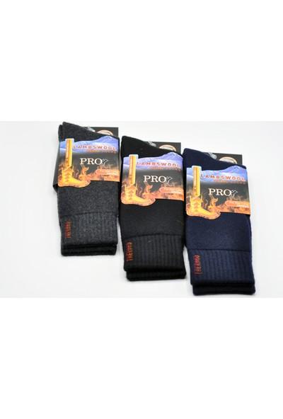 Pro Lambswool Yün Erkek Kışlık Termal Çorap - 3'lü