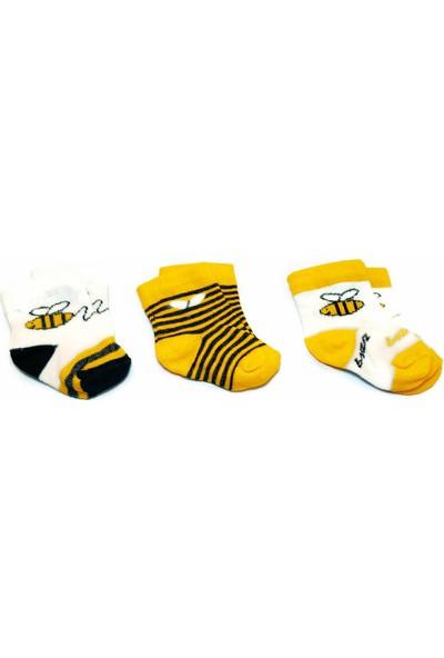 Fındıkbebe Bebek 3'lü Set Çorap