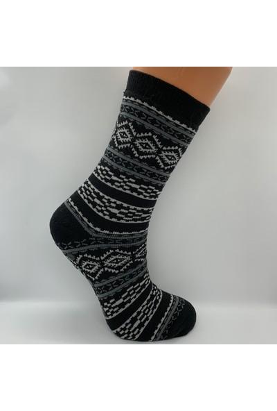 Cosy Kadın Havlu Çorap 4 Lü Paket