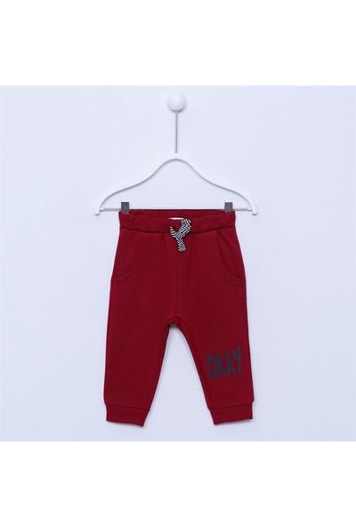 Silversun Bebek Erkek - Sweat Pantolon - Jp-112889