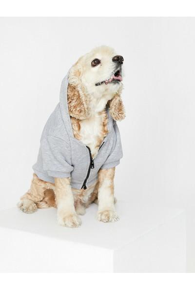 Koton Kapüsonlu Köpek Sweatshirt