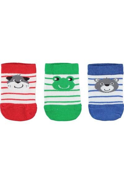 Civil Baby Erkek Bebek 3'Lü Çorap Set 0-18 Ay