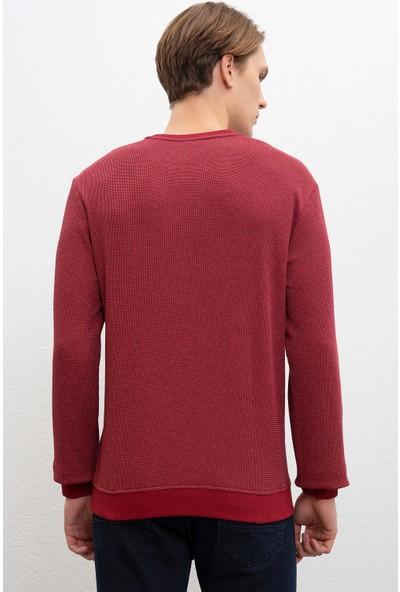 U.S. Polo Assn. Erkek Sweatshirt 50216288-Vr177