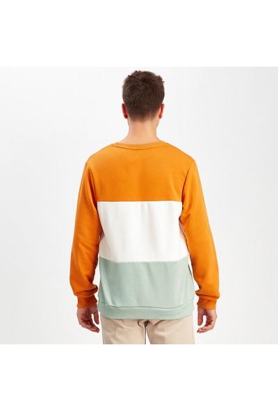 Manche Hardal-Ekru-Mint Erkek Sweatshirt | ME19W224250