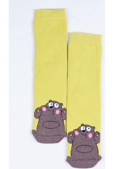 Butik Kafası Sevimli Ayı Desenli Çorap Unisex